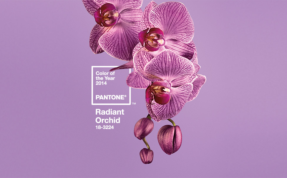 Pantone® Radiant Orchid